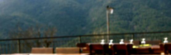 tapis-restaurante4
